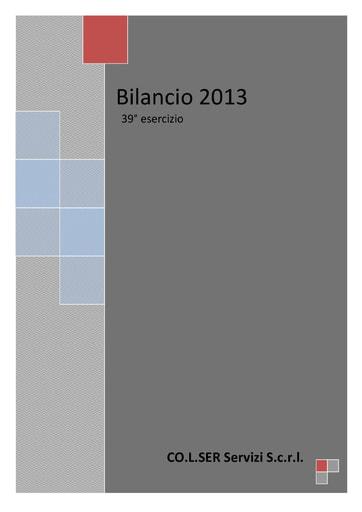 Bilancio 2013
